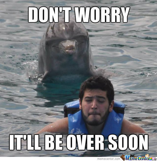 rapist-dolphin_c_2056813